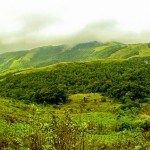 Chikmagalur Cool Weather
