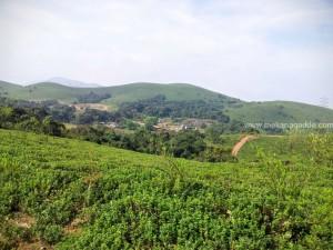 Devaramane Hills