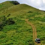 Pandavar Gudda - Jeep Drive