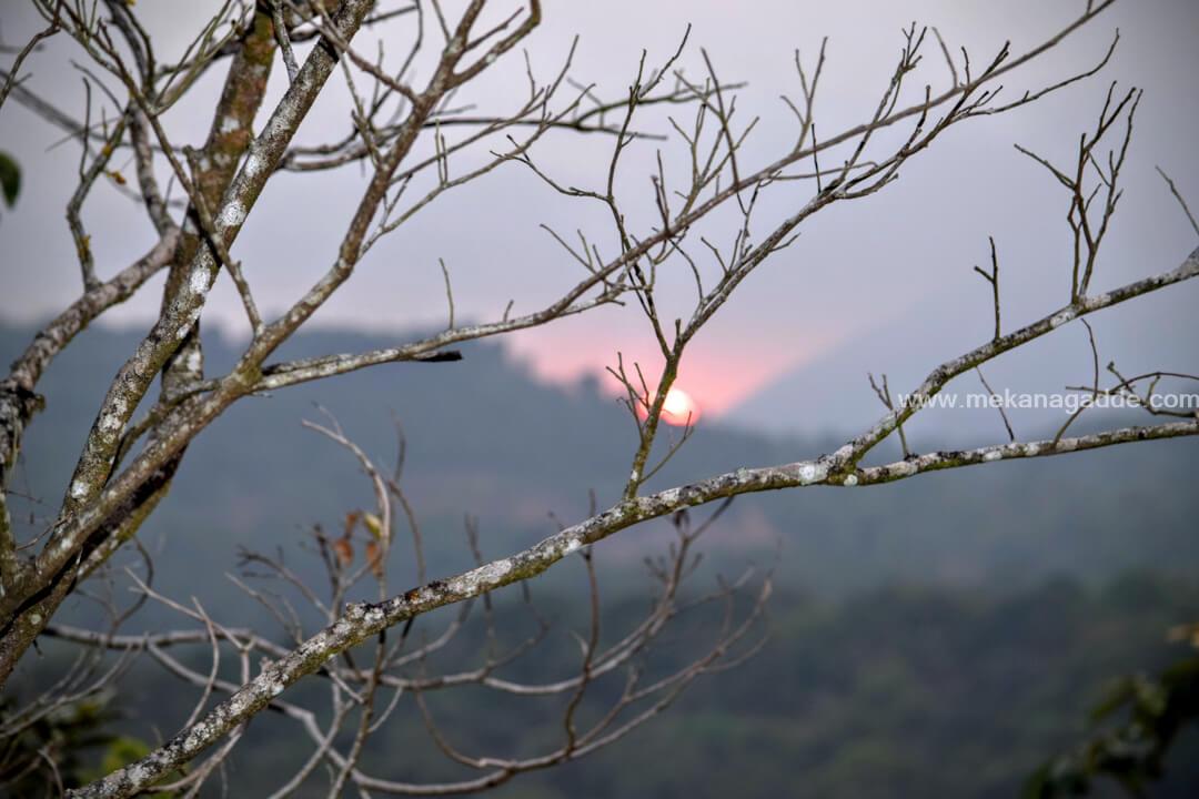Sunset From Mekanagadde Estate