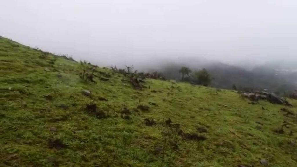 mekanagadde Homeaty Rainy Season