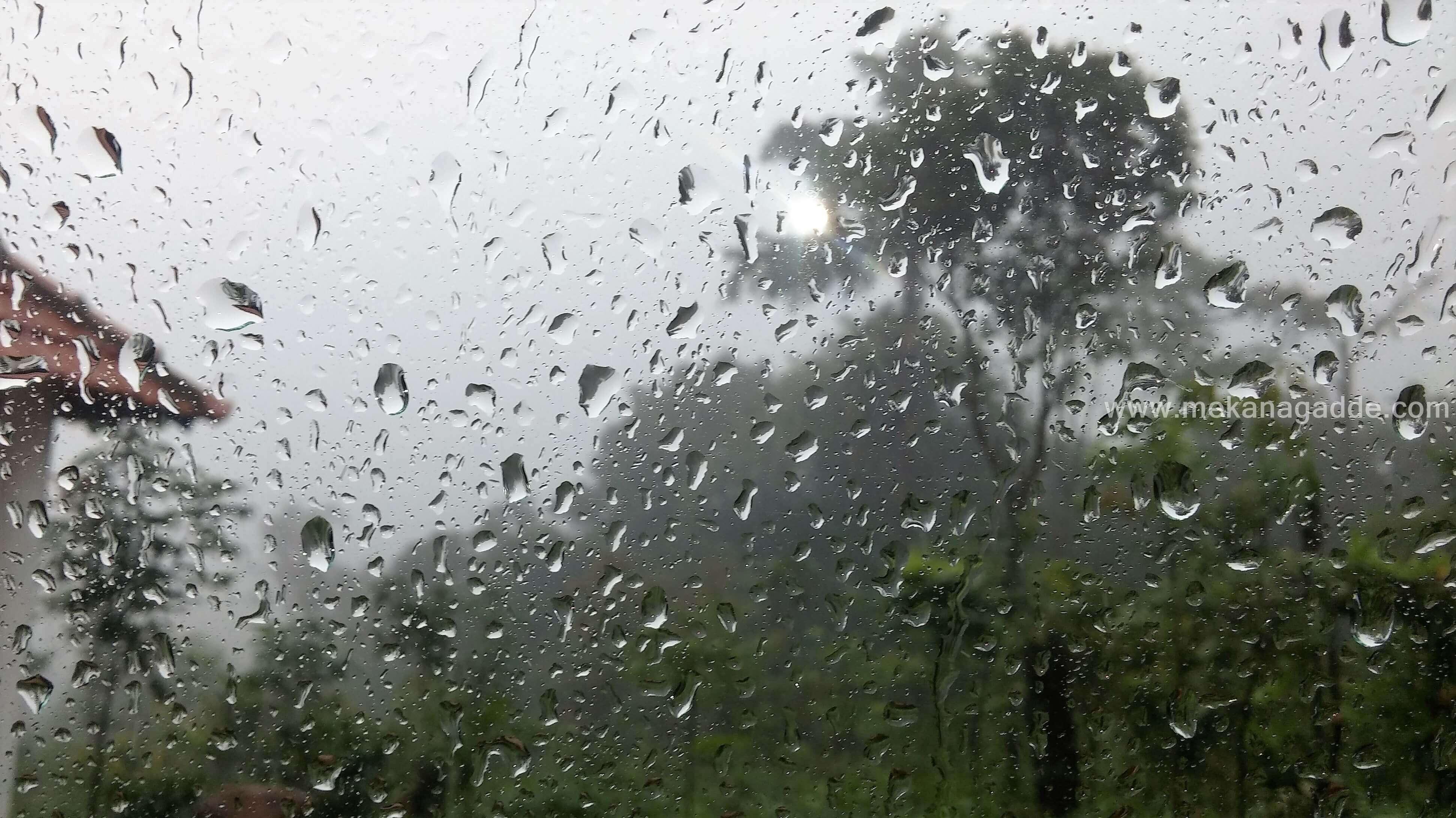 Sakleshpur Rain