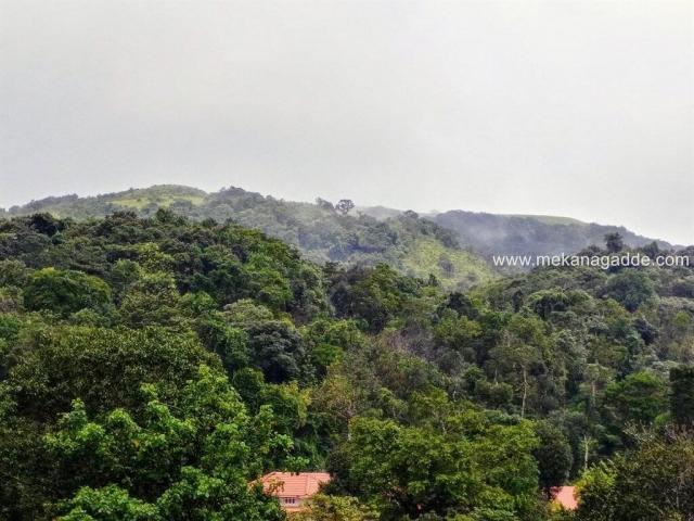 Mekanagadde Homestay Backdrop Hills