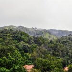 Mekanagadde Homestay Backdrop Hills